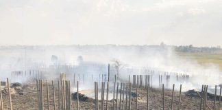 Cultural Village goes up in flames