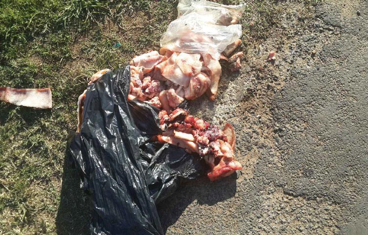 The mound of pork spilling onto the pavement