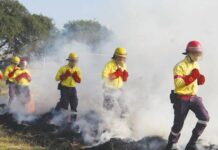 Mpumalanga Working on Fire Teams ready for Winter Fire Season