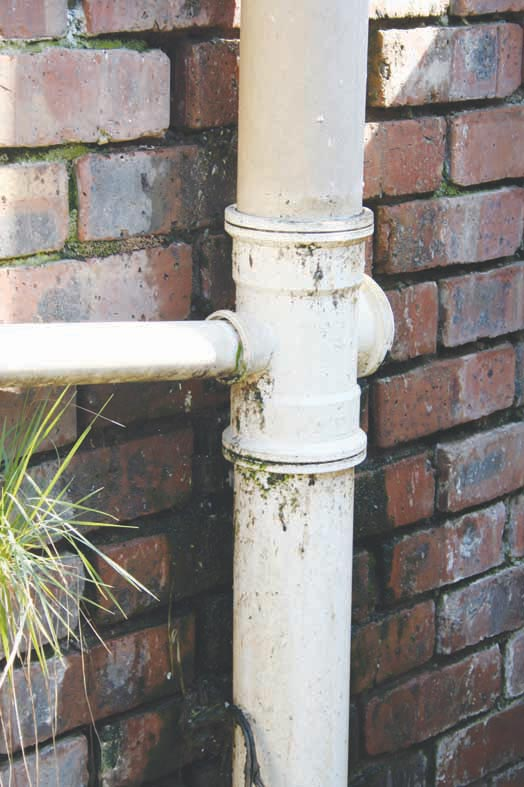 Sewer pipes are making businesses unsanitary