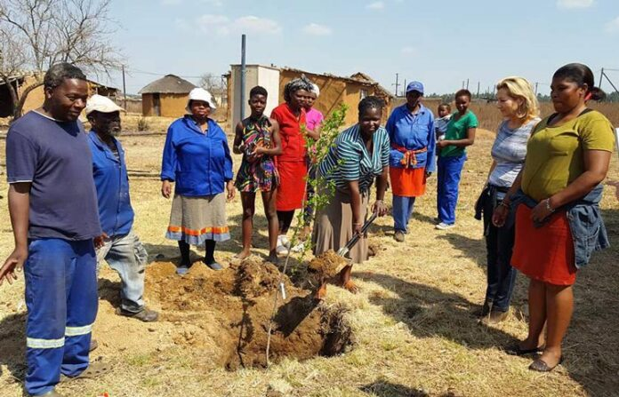 Eucaforest Celebrated Arbor Day