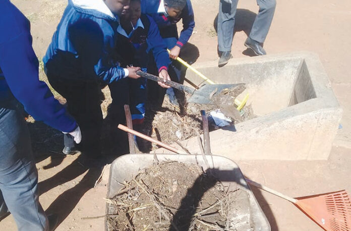 Harmony Park Combined School cleans up