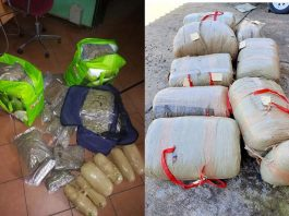 Excelsior News - Dagga confiscated worth R359 715-00