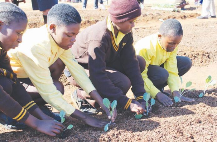 TWK Agri celebrates Mandela Day