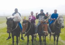 Horse racing results Overvaal
